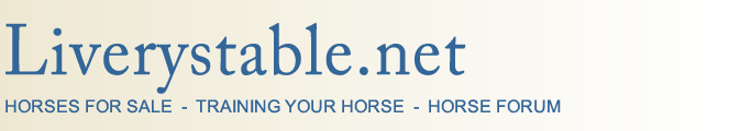 horses for sale, training your horse, horse forum