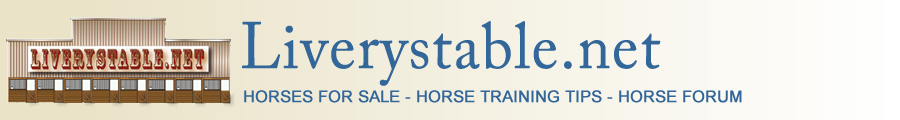 Liverystable.net, horses for sale, horse training tips, horse forum